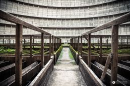 thomas daems - photographie industrielle - urban exploration - galerie - cooling towers (4)