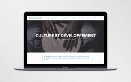 thomas daems - réalisations - site web - mach consulting (4)